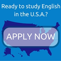 Link to IEI's Online Application