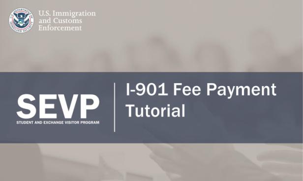 fee tutorial